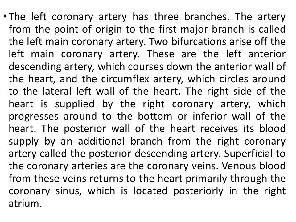 The left coronary artery has three branches
