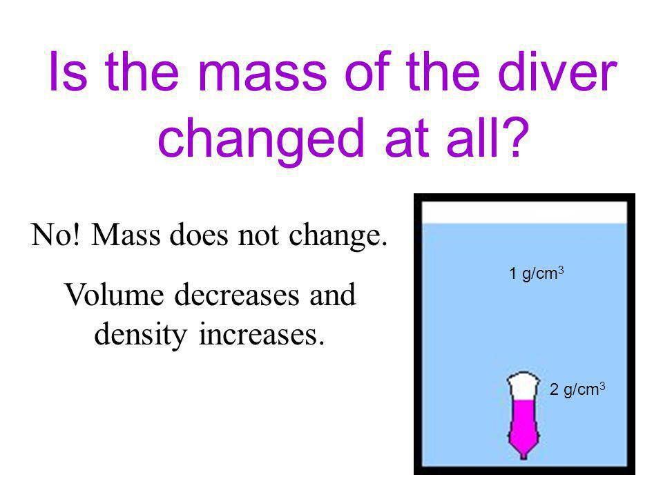 Is the mass of the diver changed at all