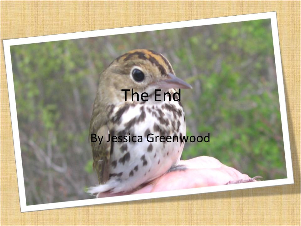 The End By Jessica Greenwood