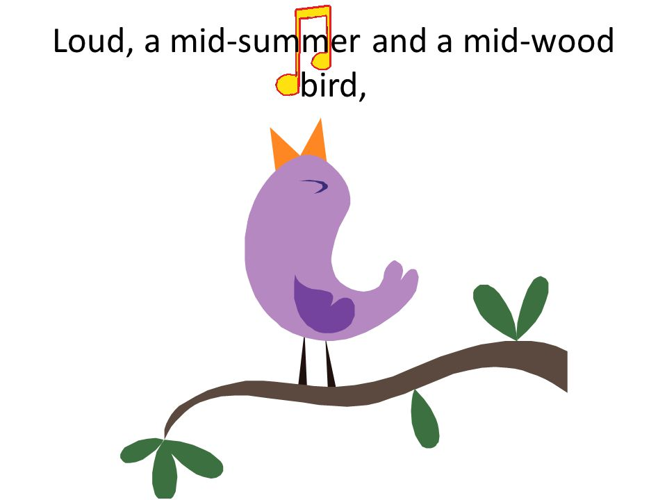Loud, a mid-summer and a mid-wood bird,