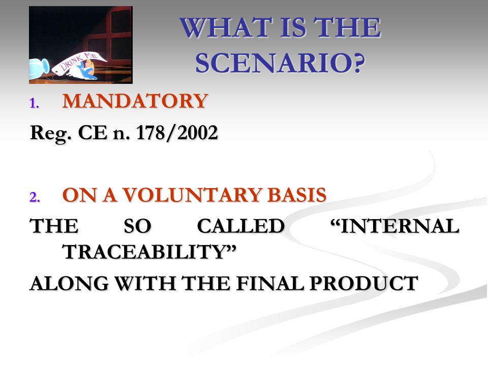 WHAT IS THE SCENARIO MANDATORY Reg. CE n. 178/2002