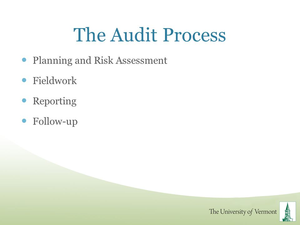 The Audit Process Planning and Risk Assessment Fieldwork Reporting