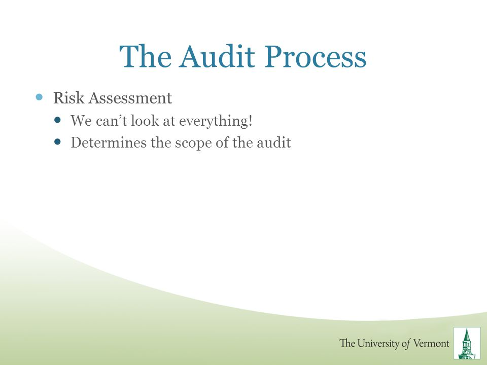 The Audit Process Risk Assessment We can't look at everything!