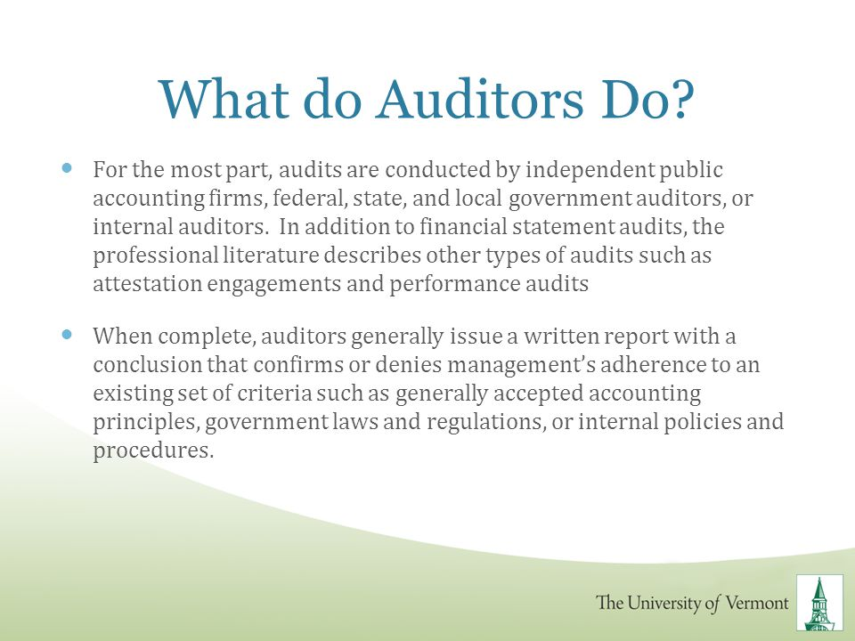 What do Auditors Do