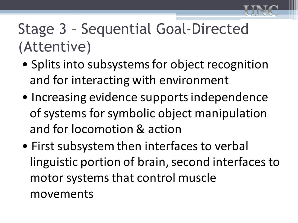 Stage 3 – Sequential Goal-Directed (Attentive)