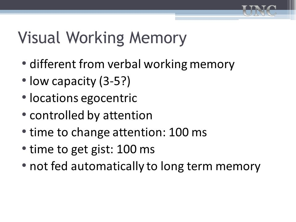 Visual Working Memory different from verbal working memory