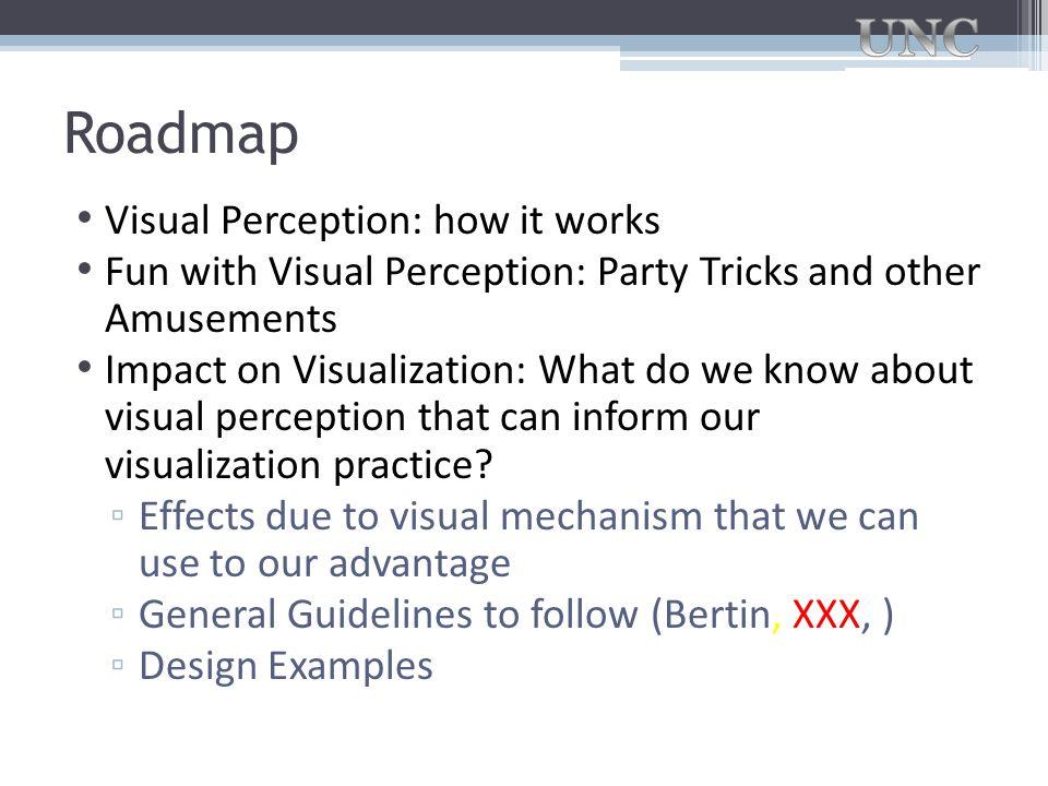 Roadmap Visual Perception: how it works