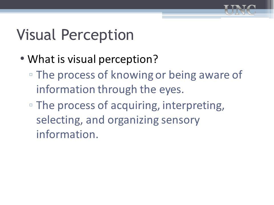 Visual Perception What is visual perception