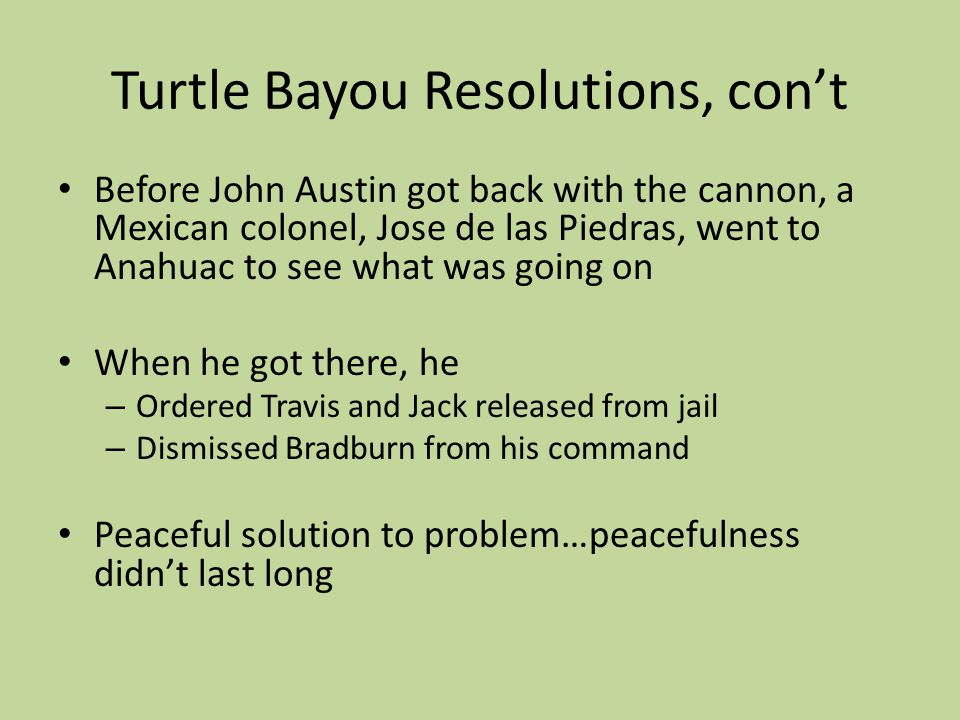 Turtle Bayou Resolutions, con't