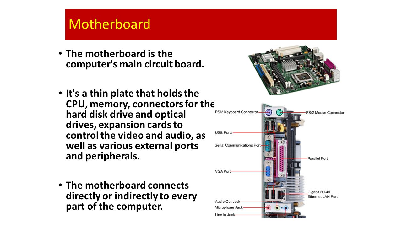 Motherboard The motherboard is the computer s main circuit board.