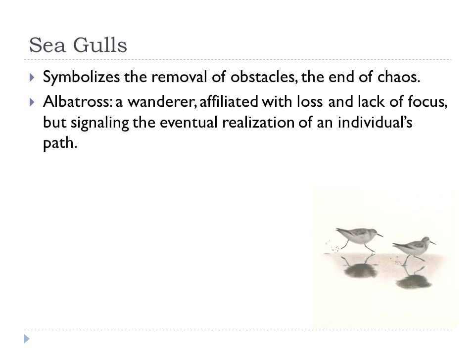 Sea Gulls Symbolizes the removal of obstacles, the end of chaos.