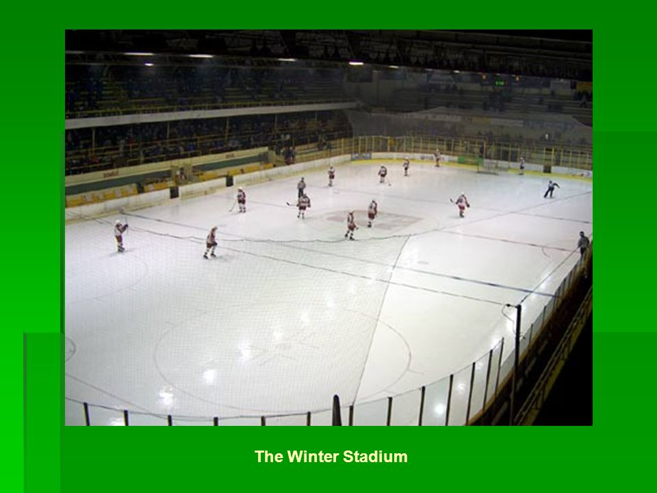 The Winter Stadium