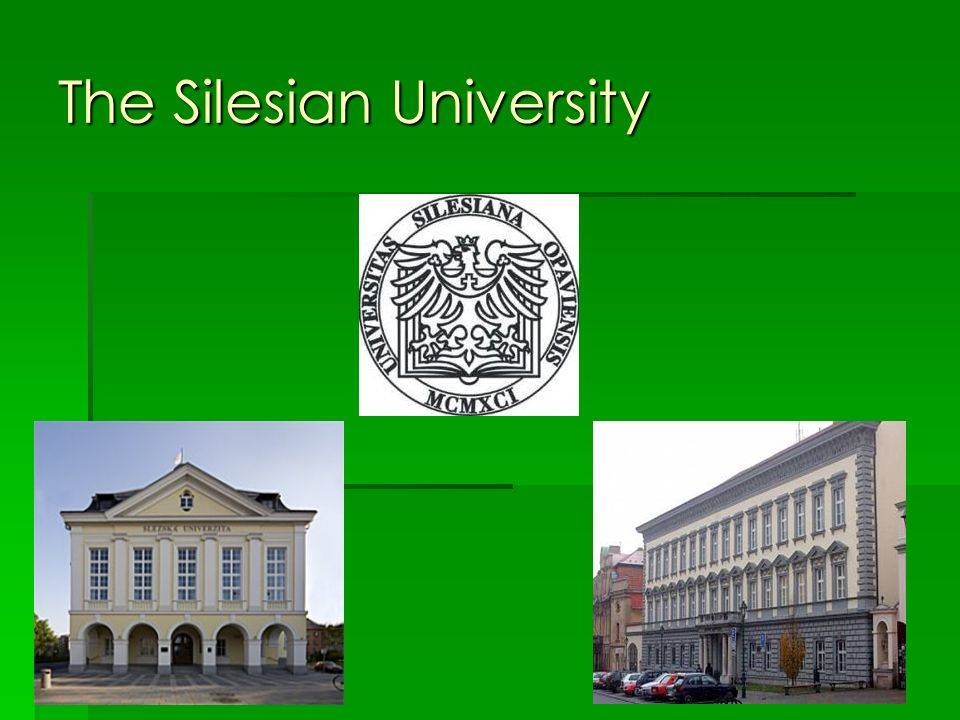 The Silesian University