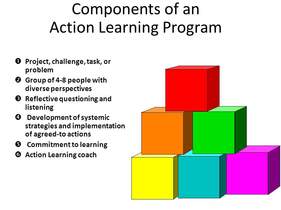 Components of an Action Learning Program