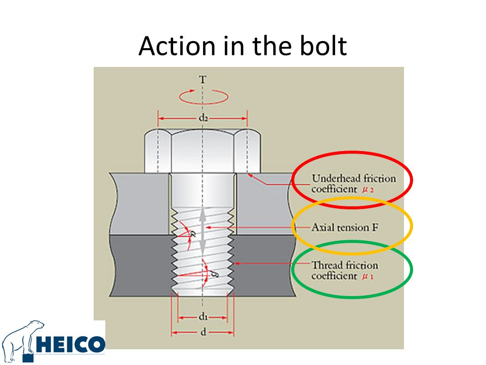 Action in the bolt