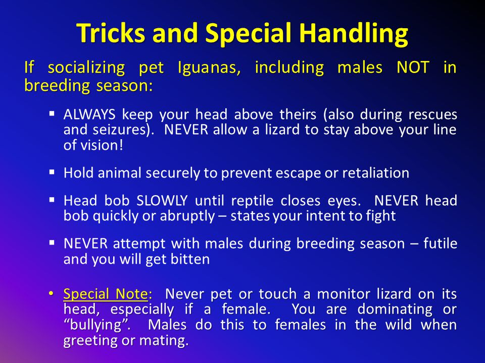 Tricks and Special Handling