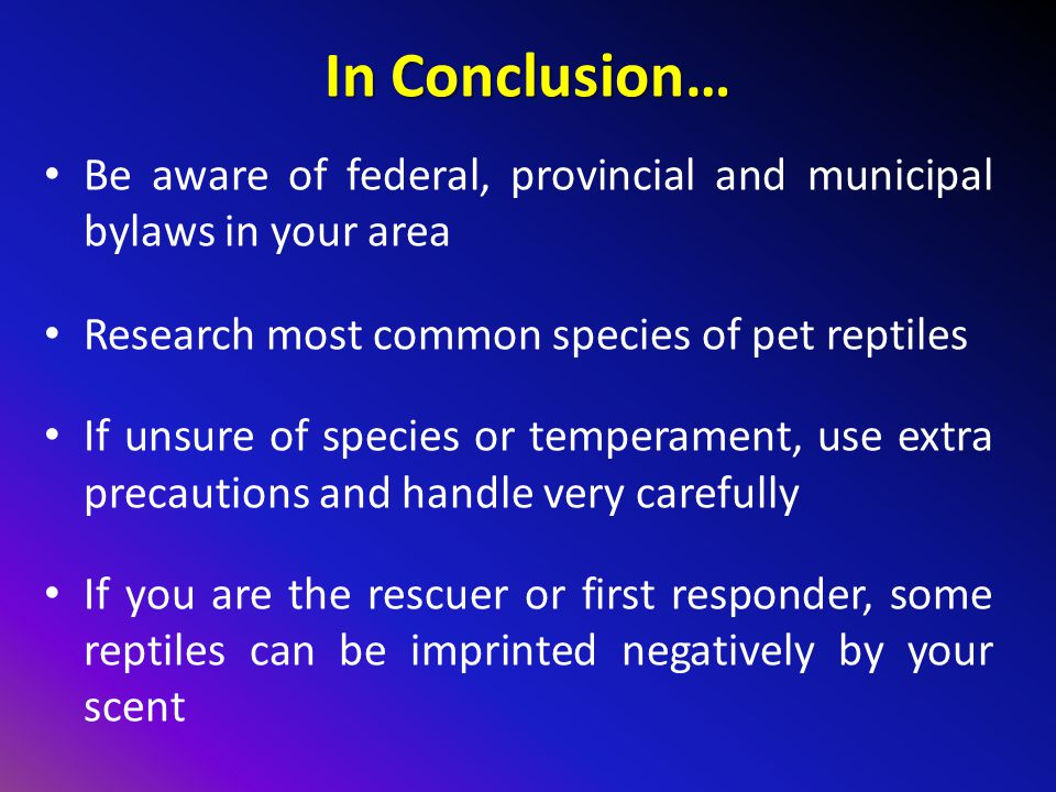 In Conclusion… Be aware of federal, provincial and municipal bylaws in your area. Research most common species of pet reptiles.