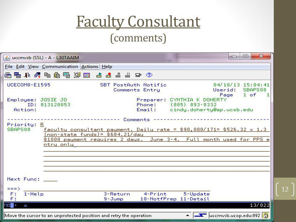 Faculty Consultant (comments)