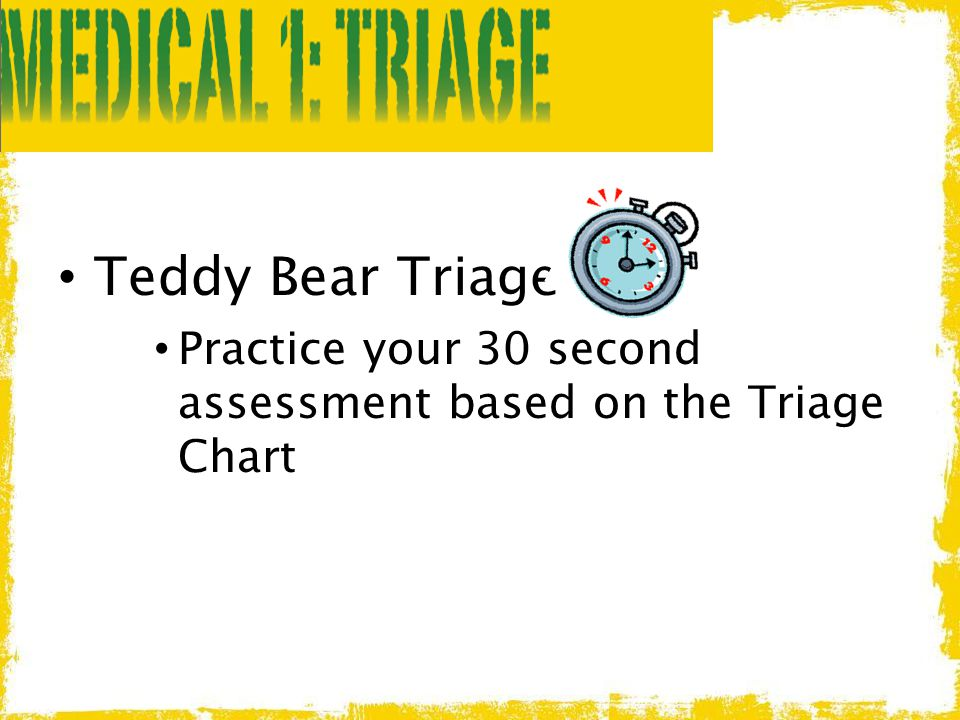 Teddy Bear Triage Practice your 30 second assessment based on the Triage Chart