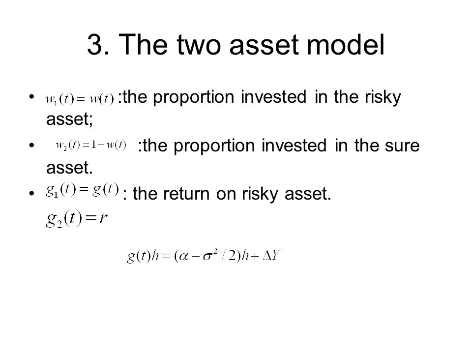 3. The two asset model :the proportion invested in the risky asset;
