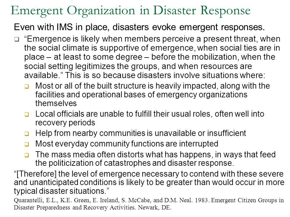 Emergent Organization in Disaster Response