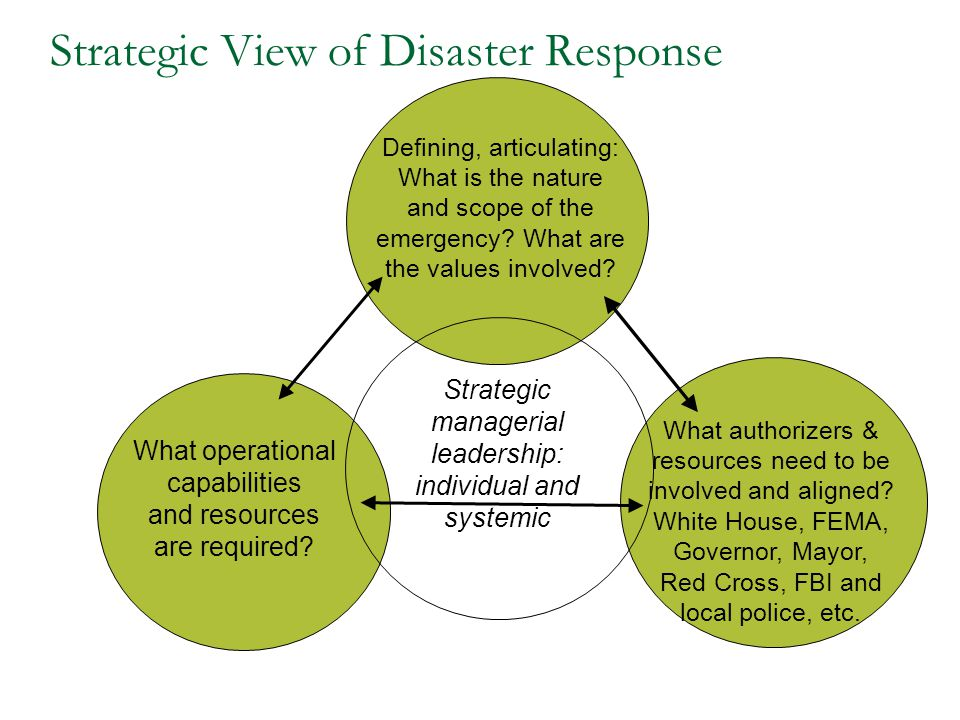 Strategic View of Disaster Response