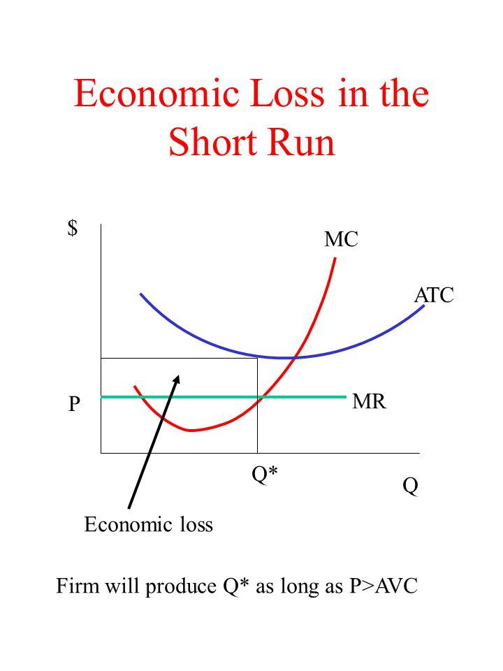 Economic Loss in the Short Run