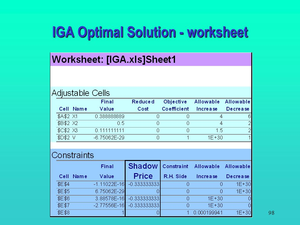 IGA Optimal Solution - worksheet