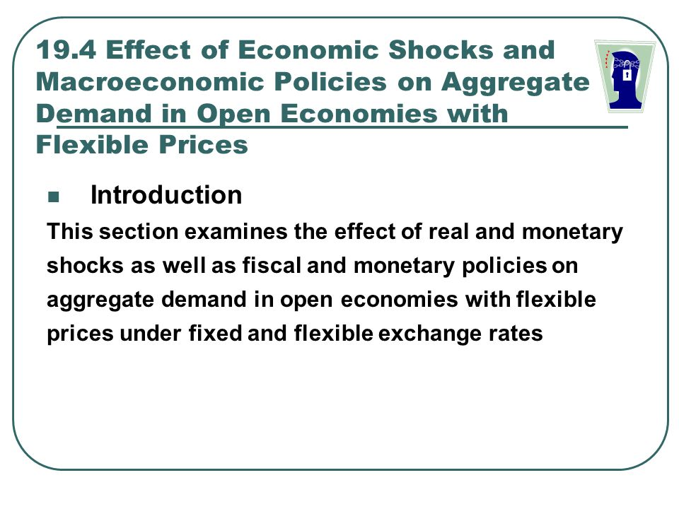 19.4 Effect of Economic Shocks and Macroeconomic Policies on Aggregate Demand in Open Economies with Flexible Prices