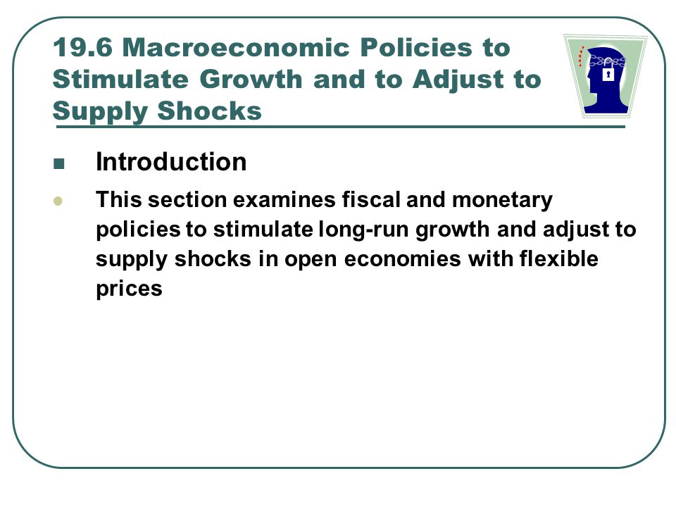19.6 Macroeconomic Policies to Stimulate Growth and to Adjust to Supply Shocks