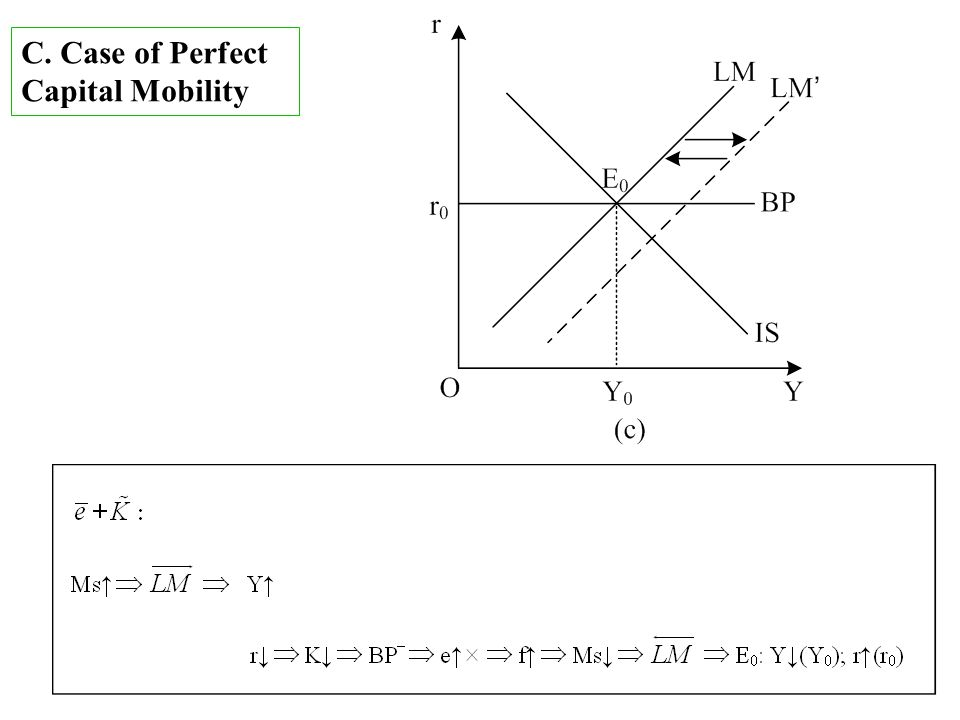 C. Case of Perfect Capital Mobility