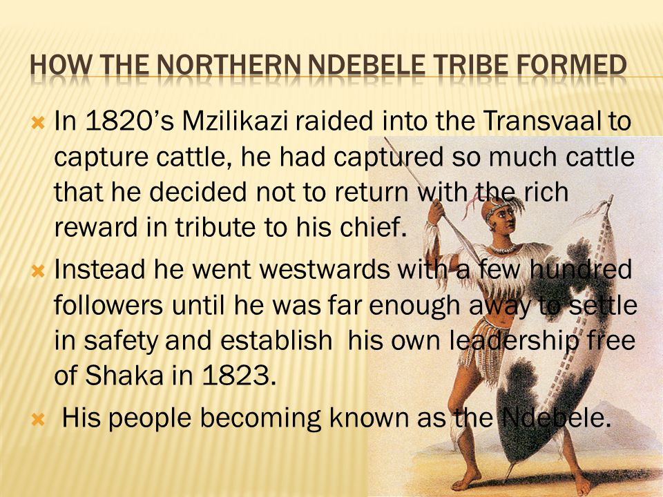 How the northern ndebele tribe formed