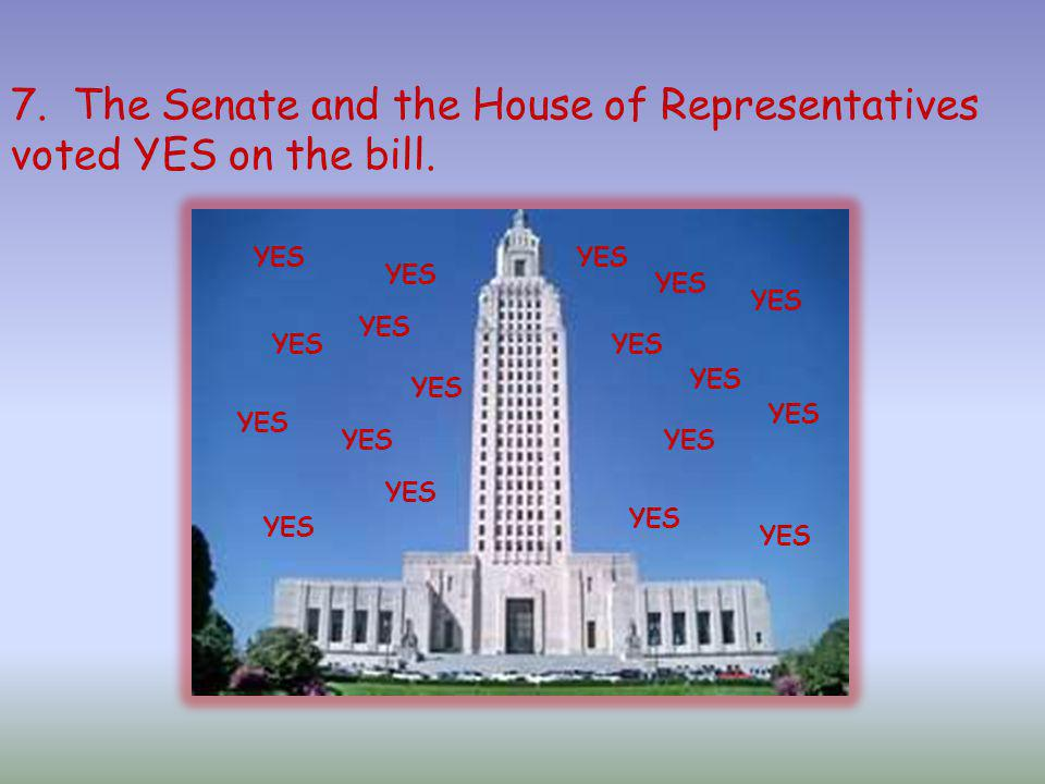 7. The Senate and the House of Representatives voted YES on the bill.