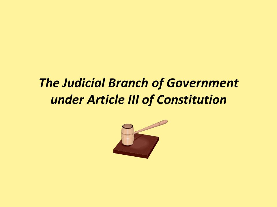 The constitution and the legislative branch of government essay