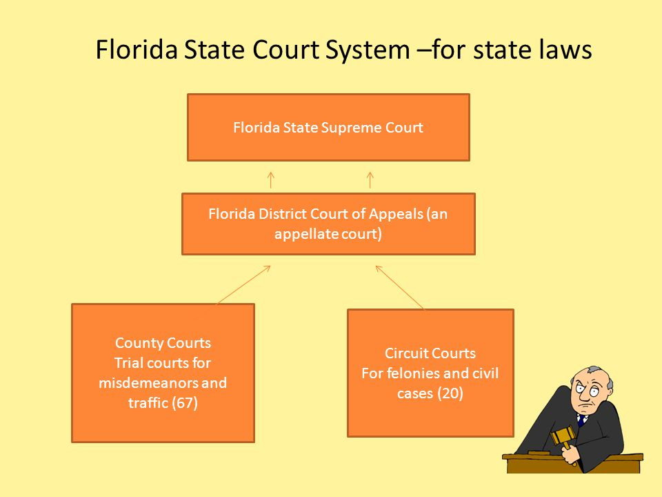 Florida State Court System –for state laws