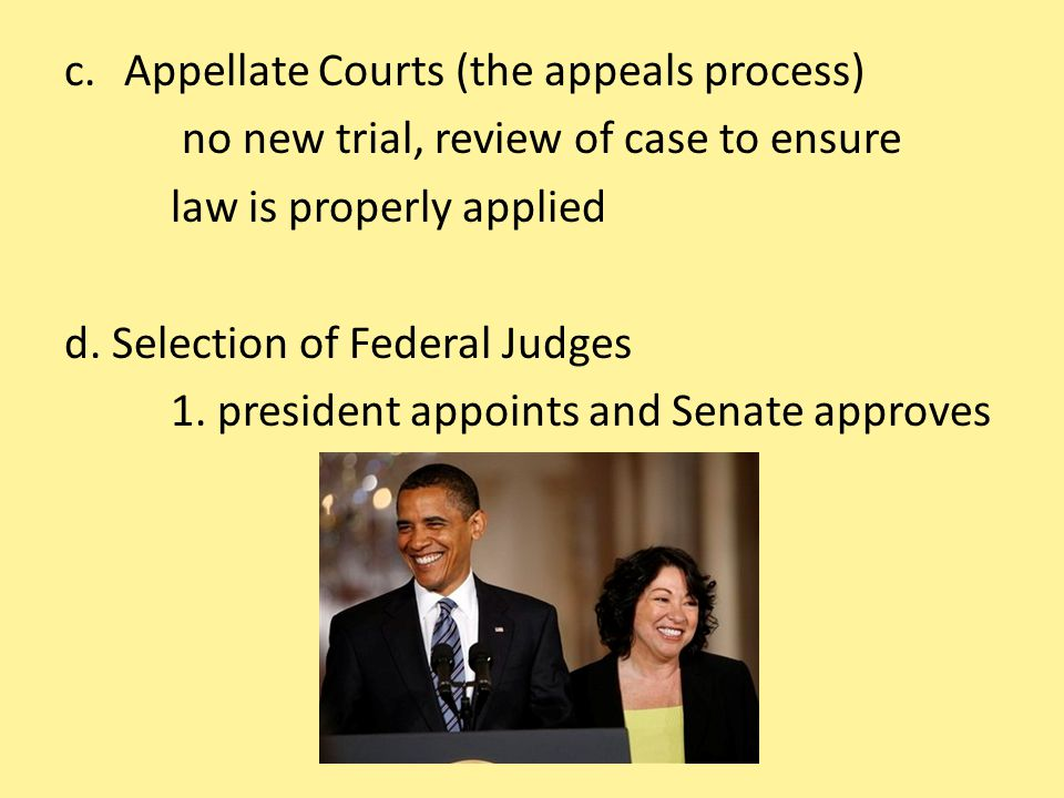 Appellate Courts (the appeals process)