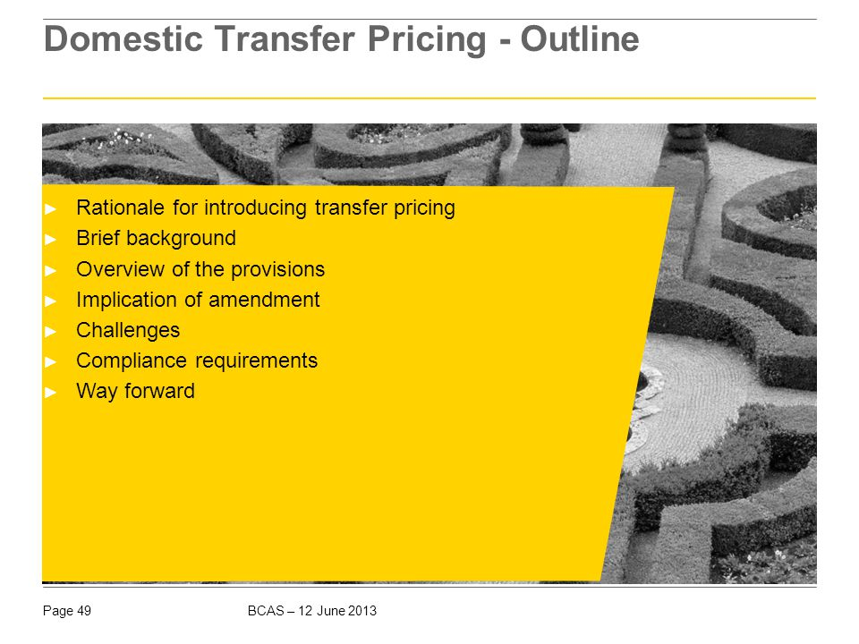 Rationale for introducing Transfer Pricing