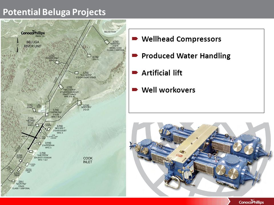 Potential Beluga Projects