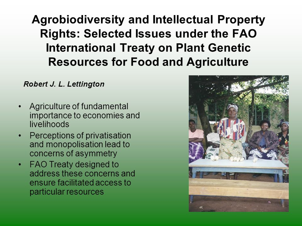 Agrobiodiversity and Intellectual Property Rights: Selected Issues under the FAO International Treaty on Plant Genetic Resources for Food and Agriculture
