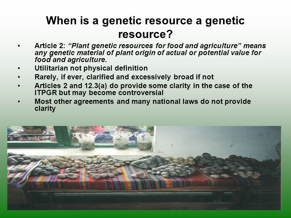 When is a genetic resource a genetic resource