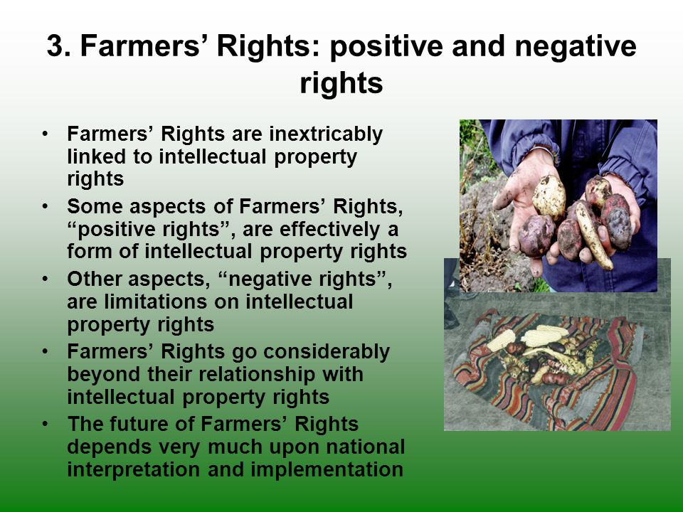 3. Farmers' Rights: positive and negative rights