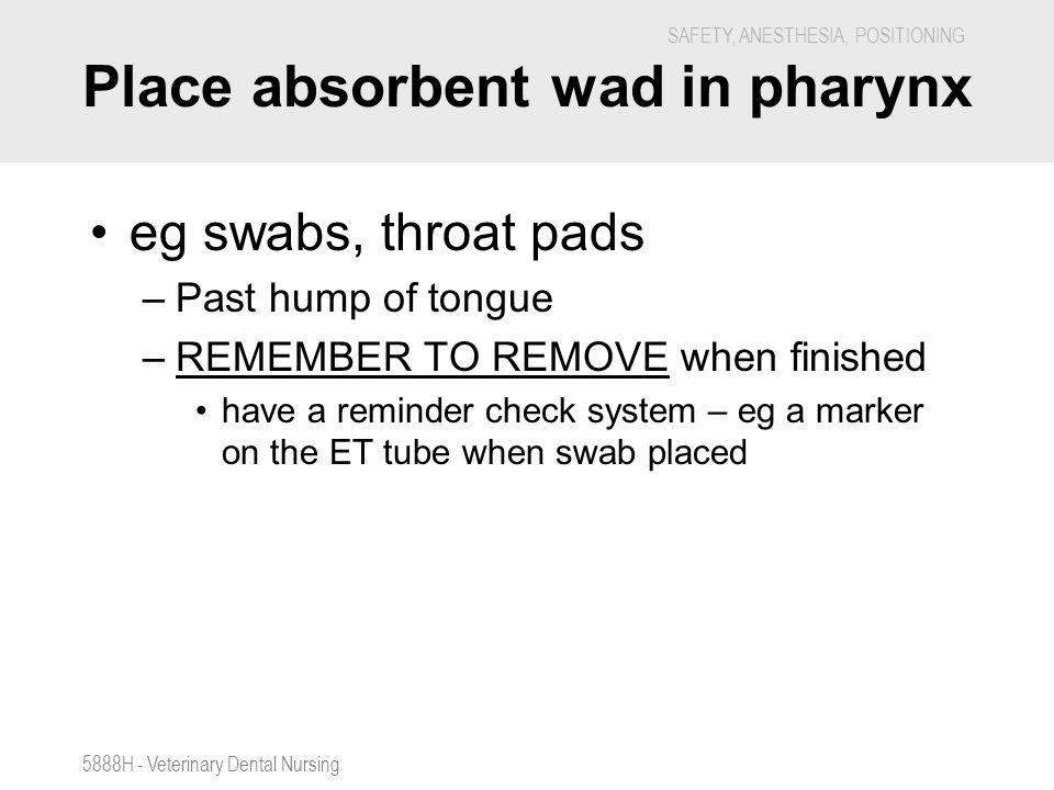 Place absorbent wad in pharynx