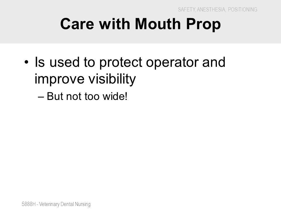 Care with Mouth Prop Is used to protect operator and improve visibility.