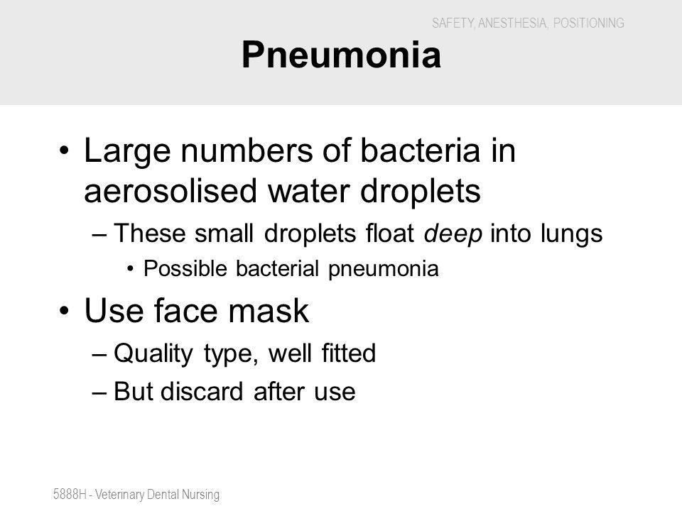 Pneumonia Large numbers of bacteria in aerosolised water droplets
