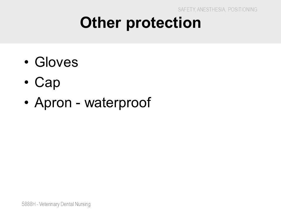 Other protection Gloves Cap Apron - waterproof