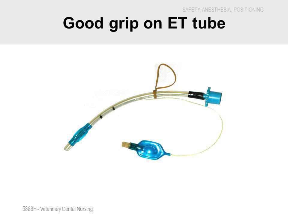 Good grip on ET tube 5888H - Veterinary Dental Nursing