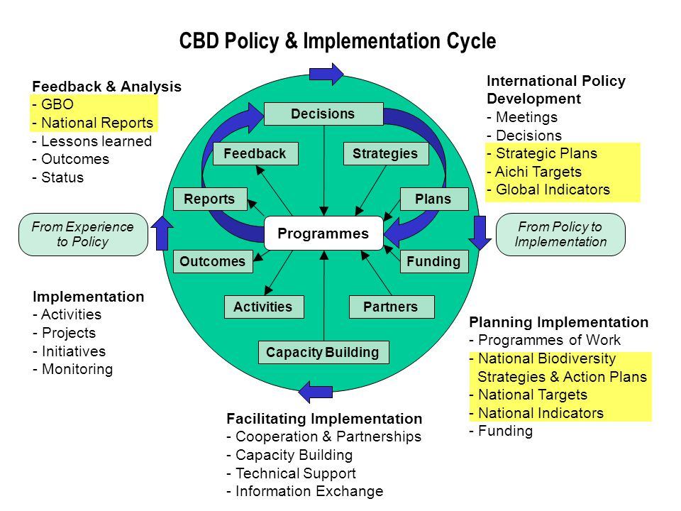 CBD Policy & Implementation Cycle