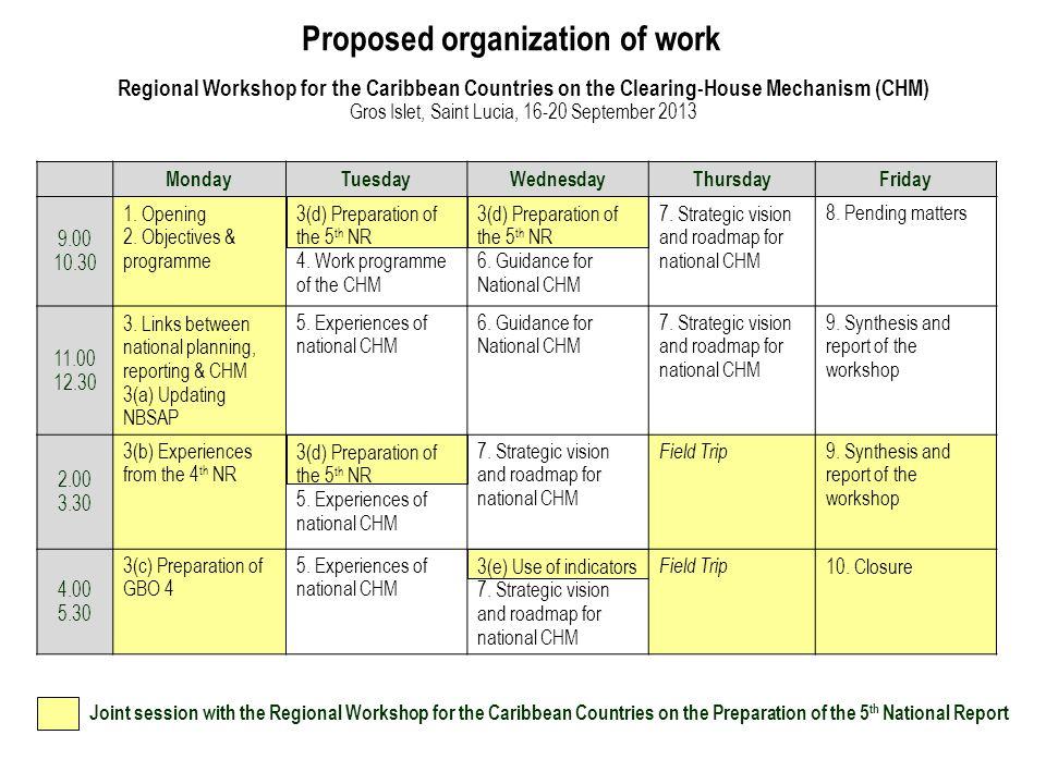 Proposed organization of work