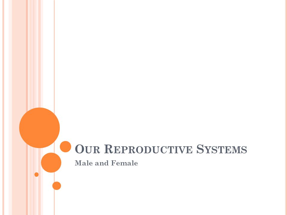 Our Reproductive Systems