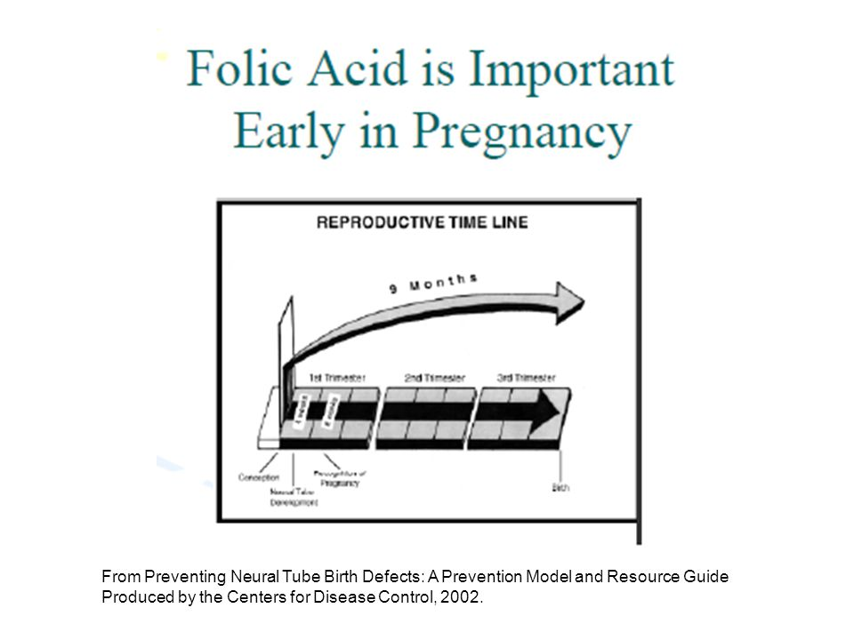 From Preventing Neural Tube Birth Defects: A Prevention Model and Resource Guide